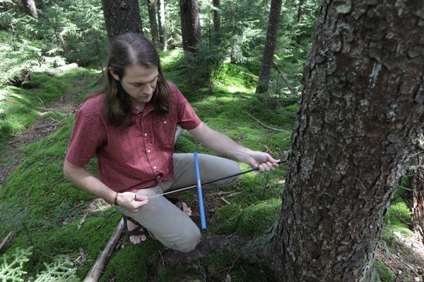 man sits by a tree with tools