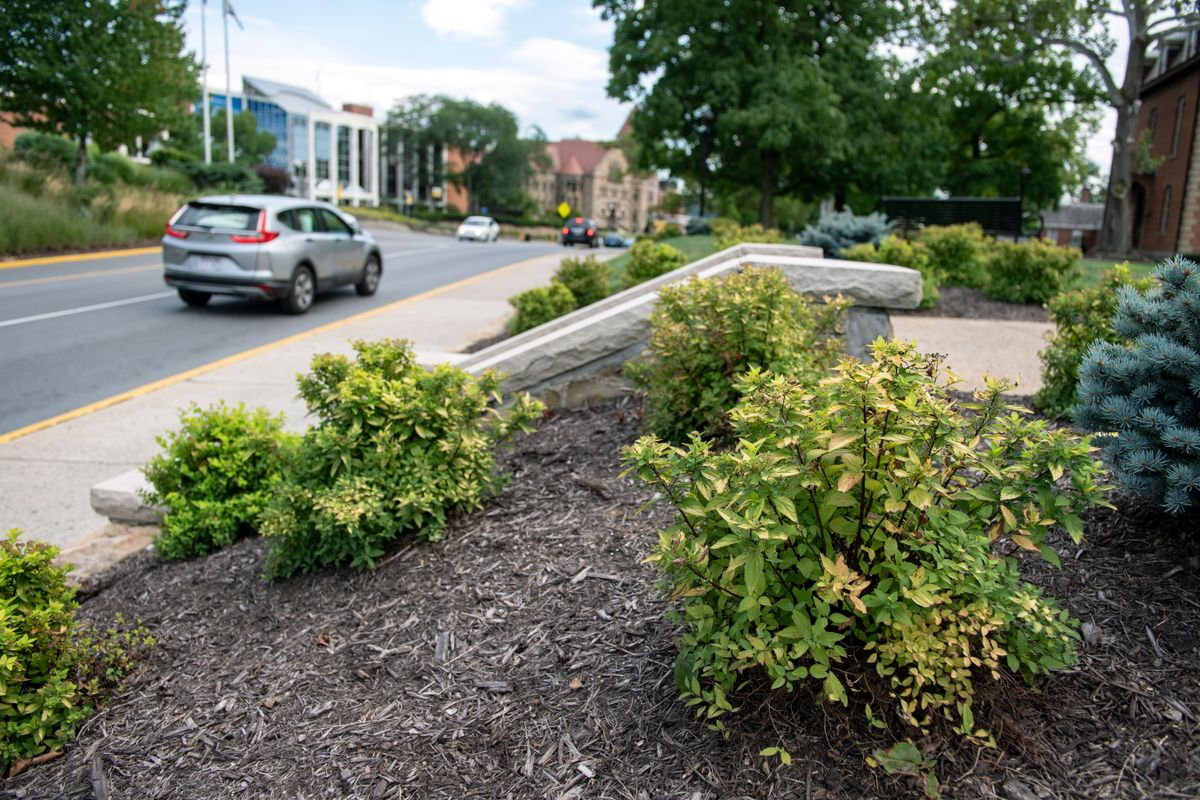 car drives by landscaped area