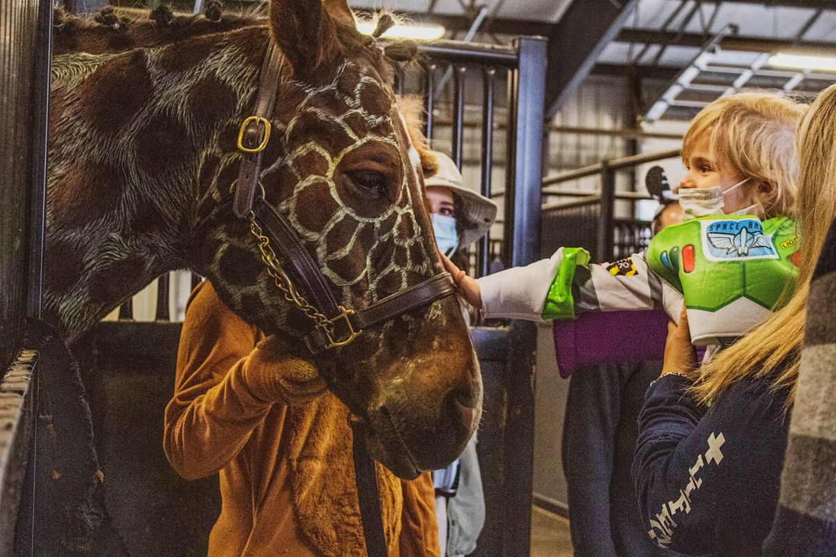 A blond child in a buzz lightyear halloween costume pets a horse made to look like a giraffe