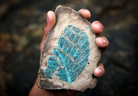 hand holding rock with blue leaf imprint