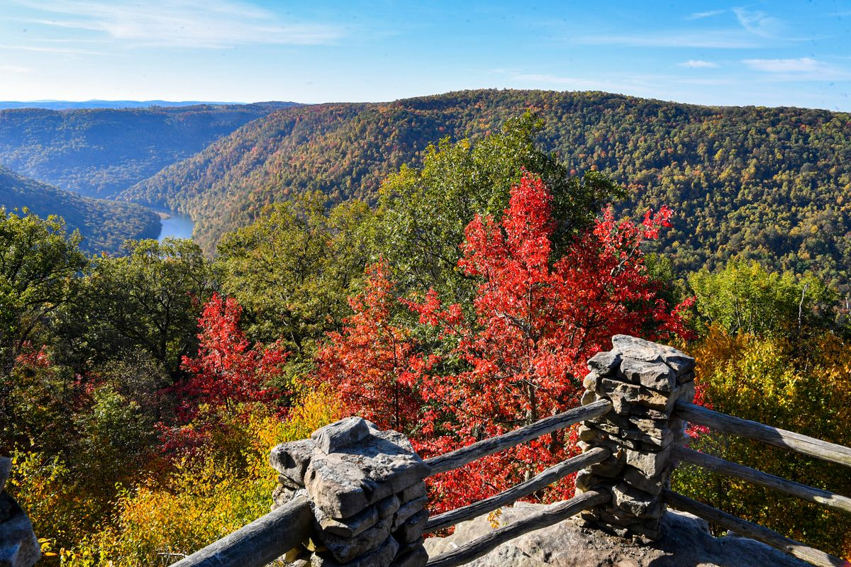 mountain, river view, fall leaves
