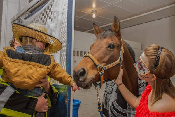 A child in Halloween costume greets a horse and a WVU student also in costume