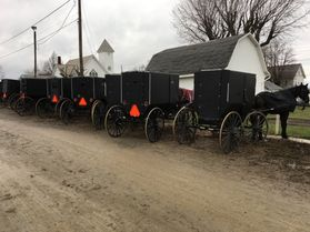 Amish black buggies