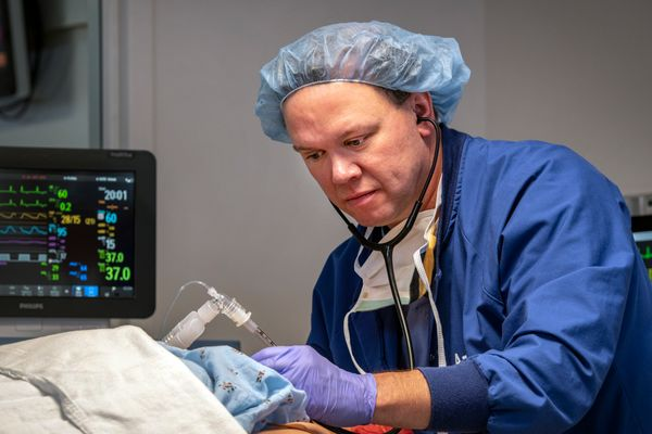 Doctor in blue scrubs performing surgery