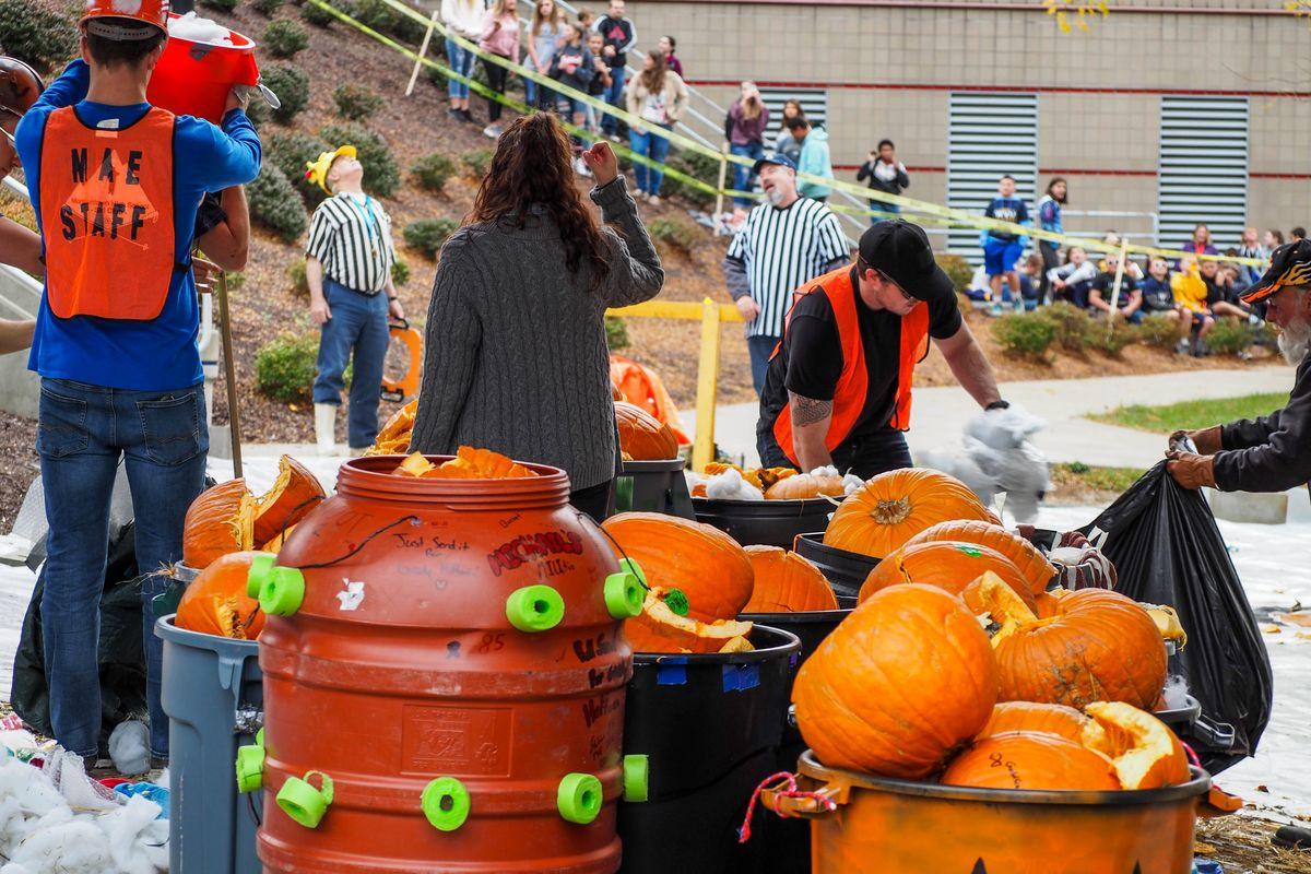 pumpkins in barrels