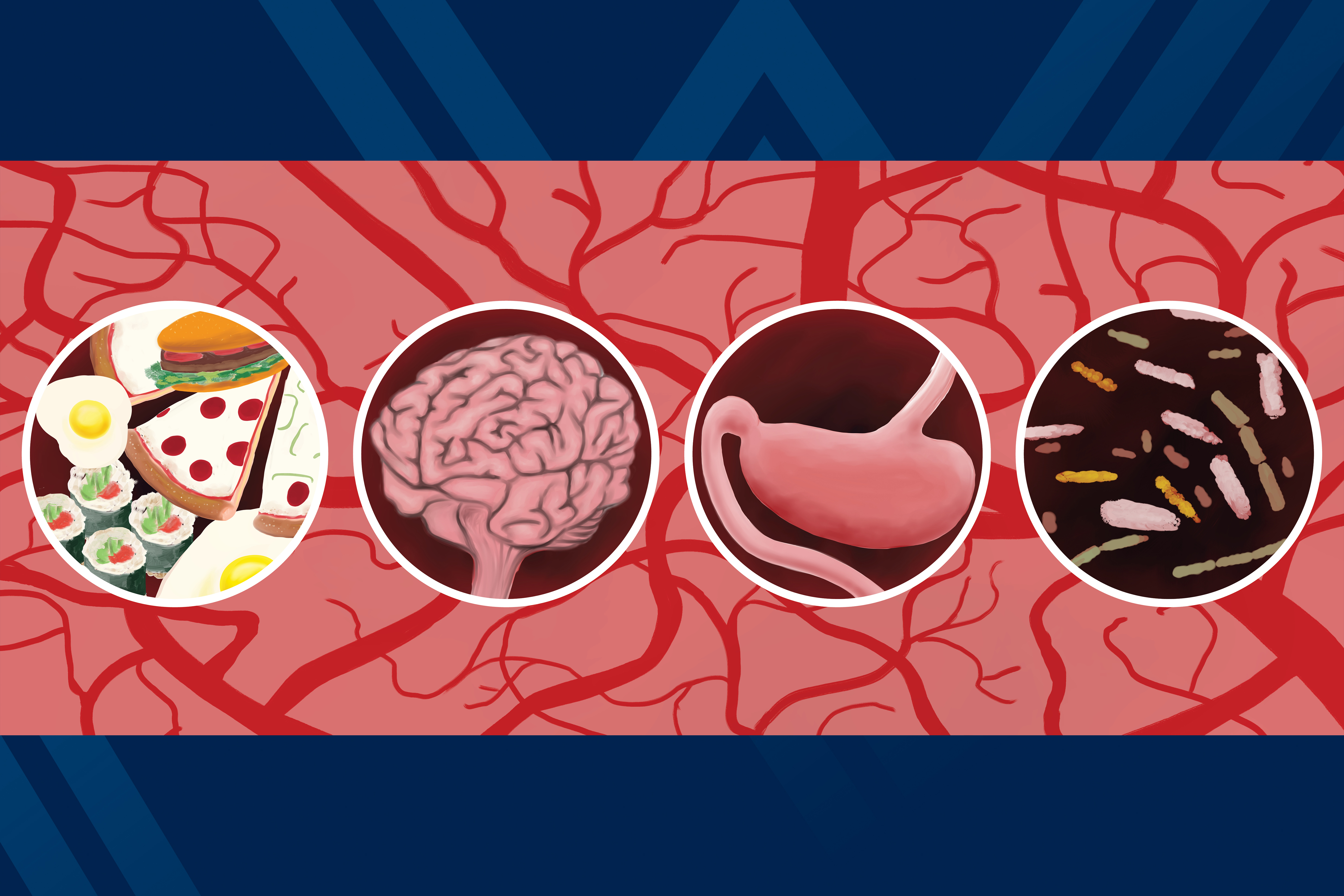 graphic of food, a brain, a stomach and microbiomes