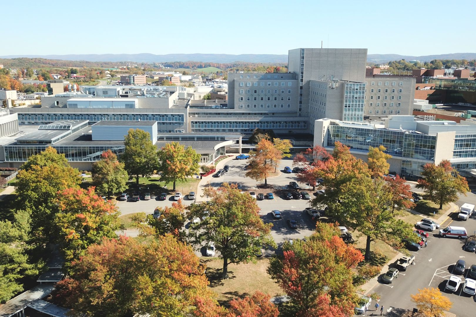 large buildings with fall trees in the foreground