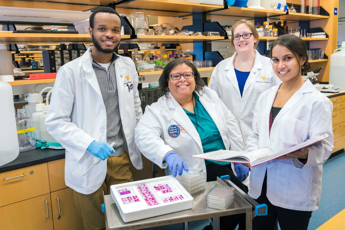 Candice Brown, an assistant professor in the WVU School of Medicine, works with her laboratory assistants (L to R) Divine Nwafor, an MD/PhD neuroscience student, Allison Brichacek, a PhD student of immunology and microbial pathogenesis, and Sneha Gupta, a second-year School of Medicine student. They are investigating how sepsis may precipitate and exacerbate dementia.