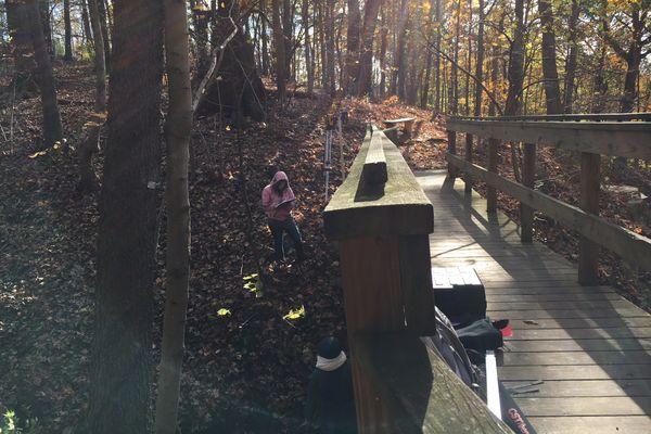 A student assesses a bridge in the Core Arboretum