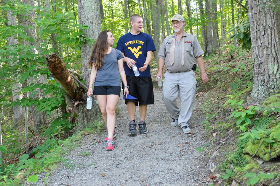 Three people walk through the woods on a wide gravel path