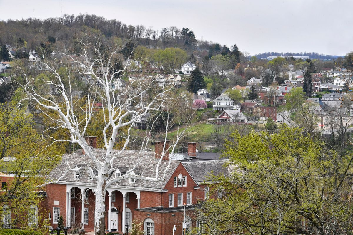 leafless tree in front of old brick building, houses on hillside in background