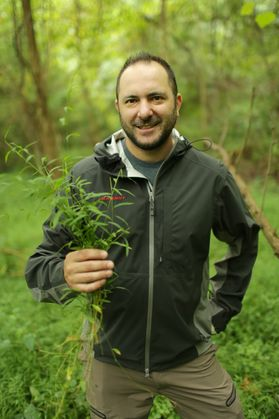 man stands in woods holding grass-like plant