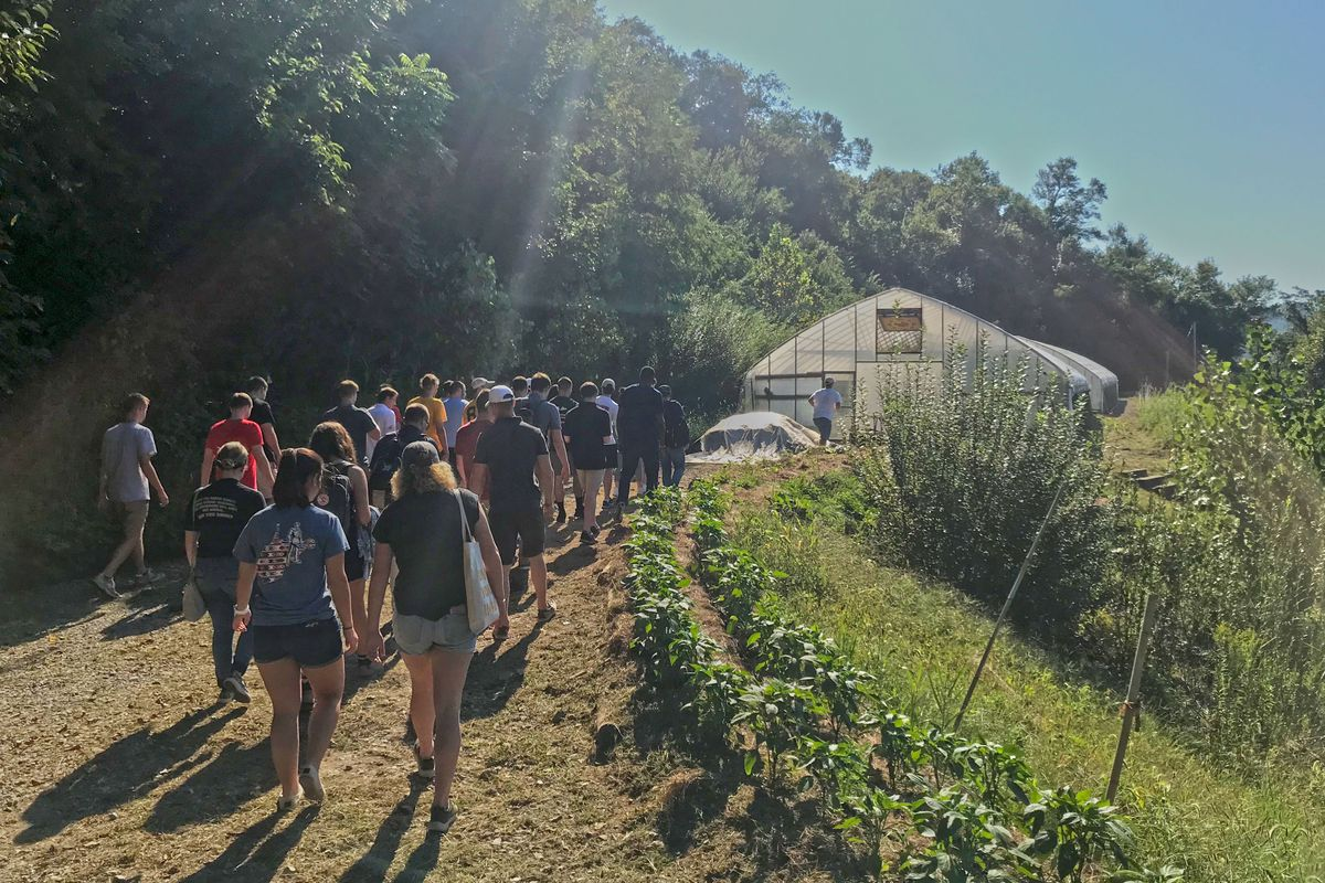 A crowd of students walking through the forest towards a greenhouse