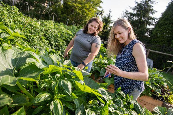 Two women standing in a garden holding a pepper