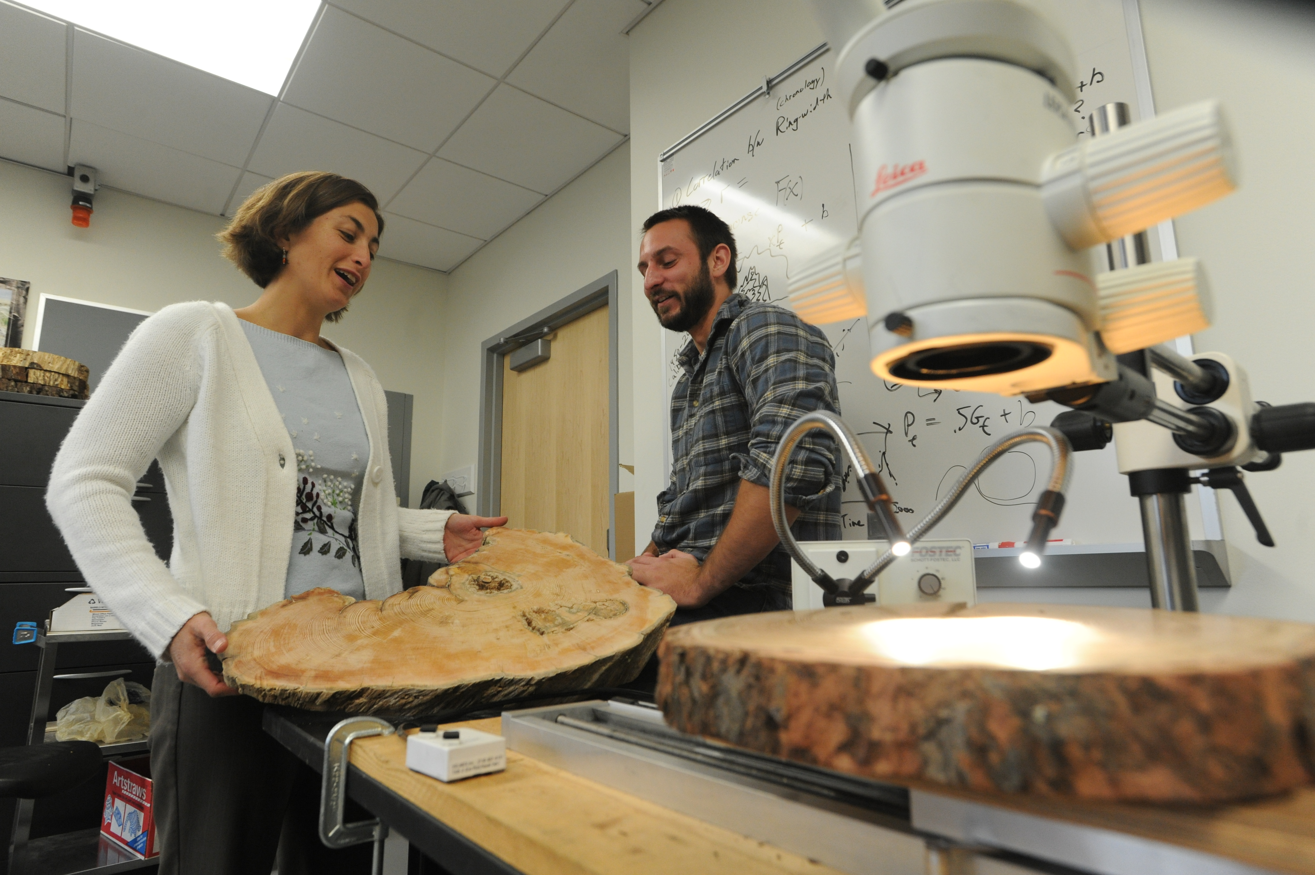 Woman and man in a lab with tree samples