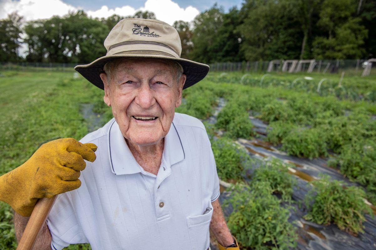 Smiling man holding shovel, standing in tomato field