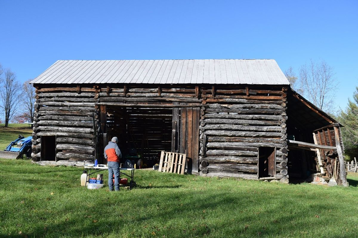 person stands in front of log barn, green grass, bright blue sky