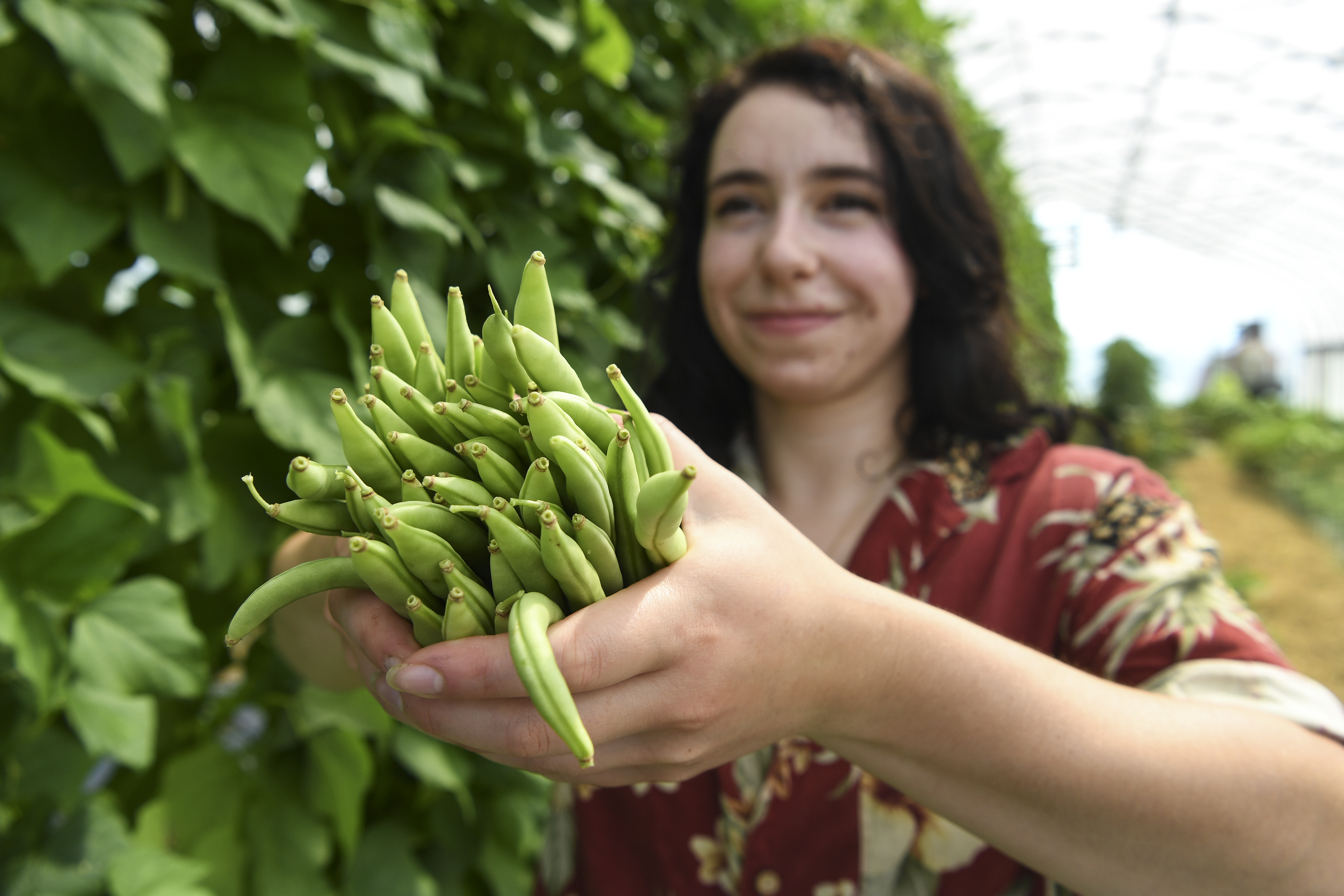 a woman with dark hair holds hands full of green beans