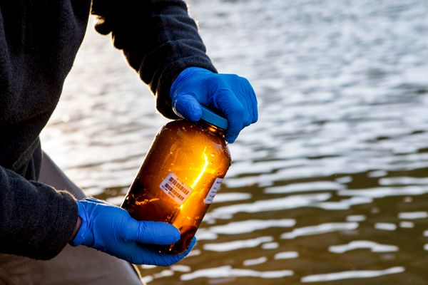 hands in blue gloves hold a brown jar with bar code in front of a body of water