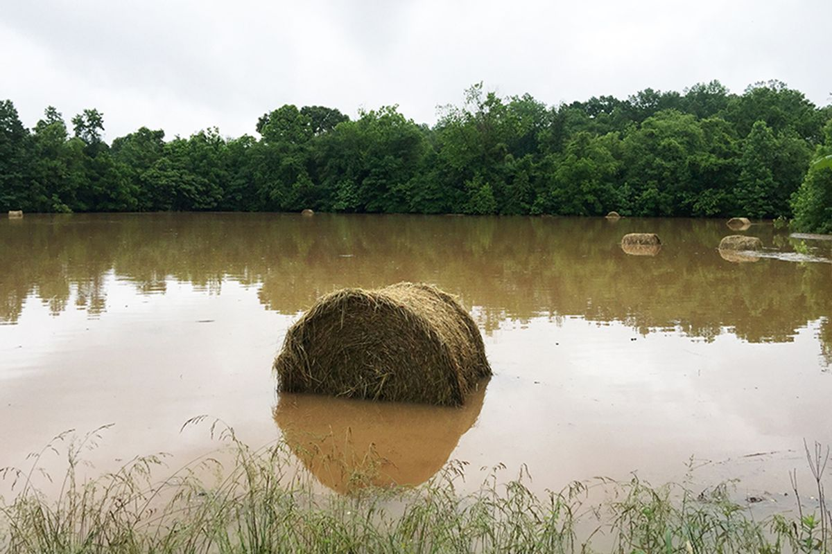 A round bale of hay sits in flood waters