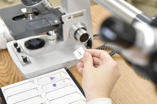 Lab worker holds specimen slide near microscope