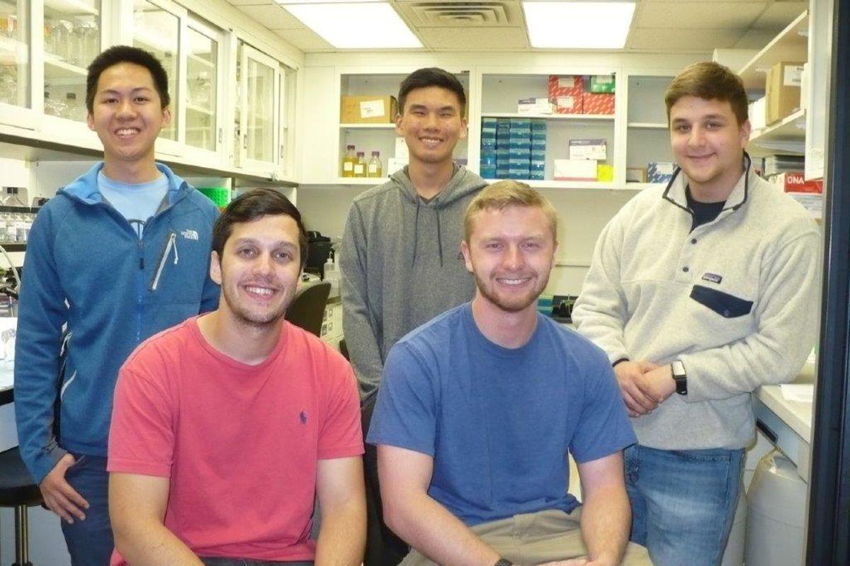 summer research undergraduate fellowship program
