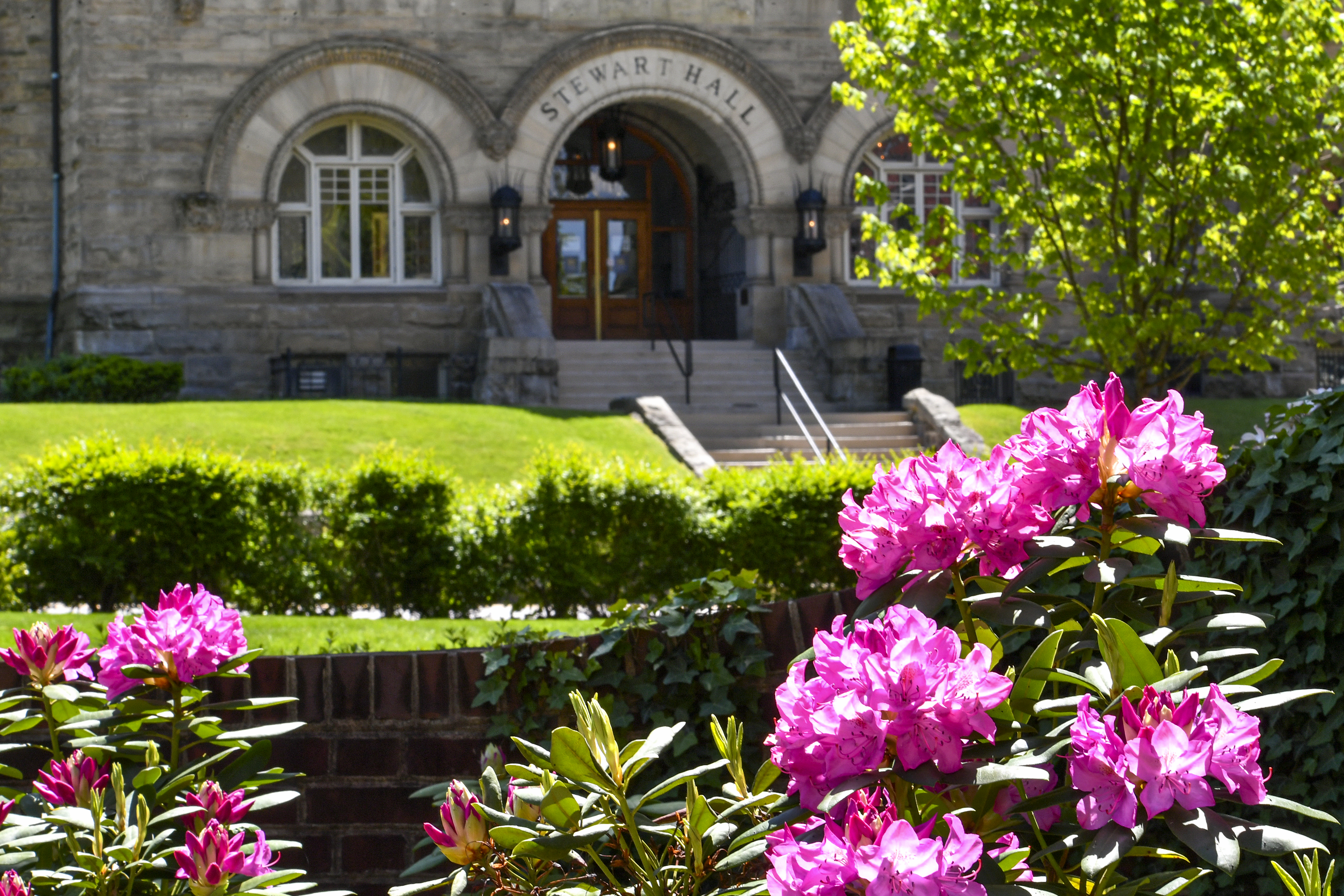 flowers bloom in front of large stone building