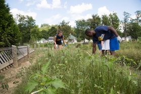 WVU Tech students clear weeds from a garden after the floods in White Sulphur Springs