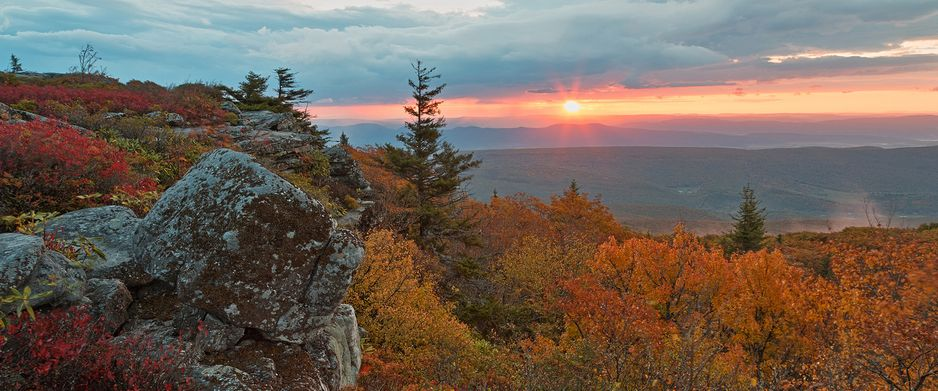 Dolly Sods National Park