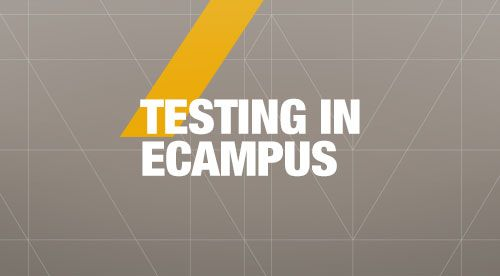 Screenshot of the eCampus Tests, Surveys, and Pools tool