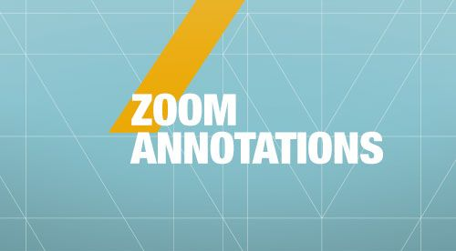 Zoom Annotations