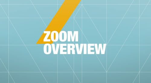 Zoom overview
