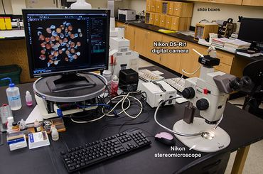 Workstation on lab table
