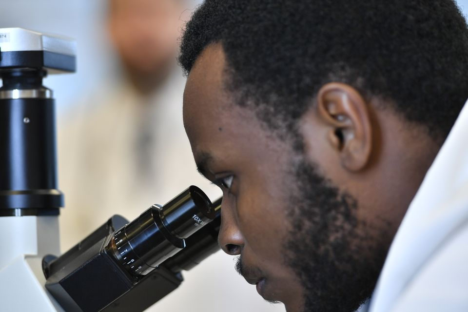 WVU student researcher using microscope