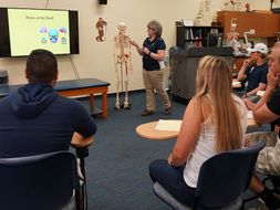 Students in class observe a presentation about the skeletal system