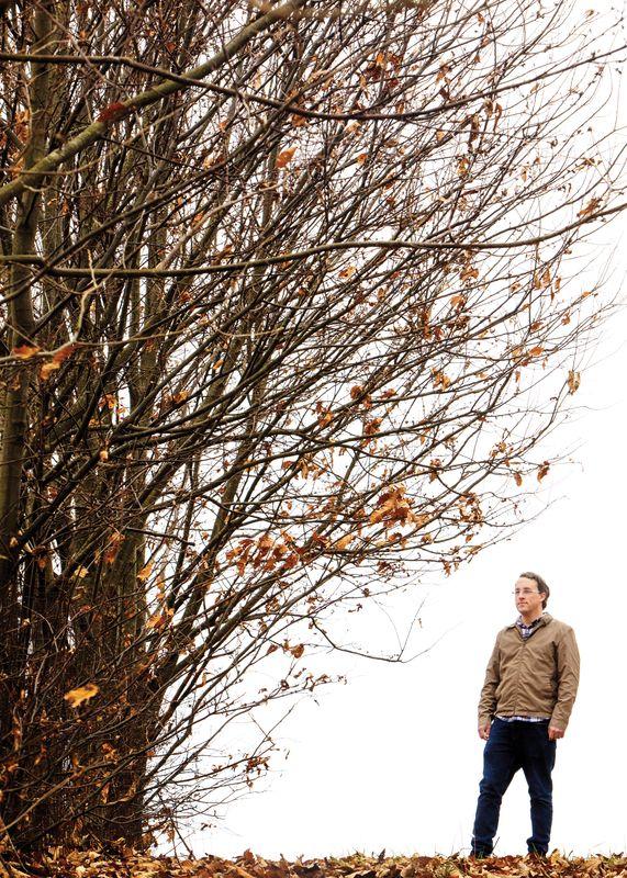 Matt Kasson and Chestnut Tree