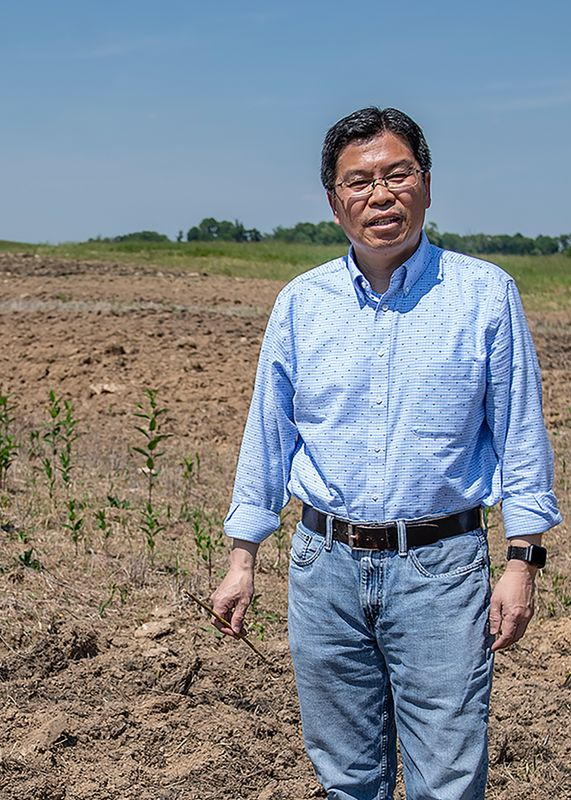 Jingxin Wang standing in a brown field where trees are being grown for a biomass project.