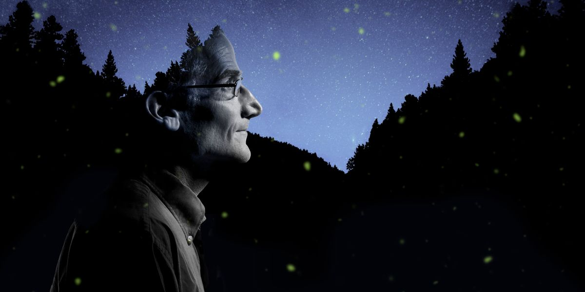 Duncan Lorimer superimposed over the night sky with fireflies in the background.