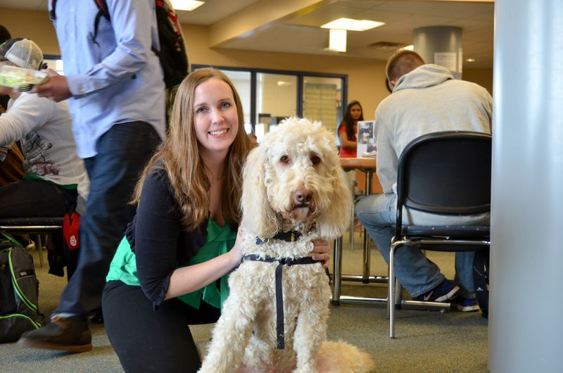 The Dogs of Campus | WVU Magazine | West Virginia University