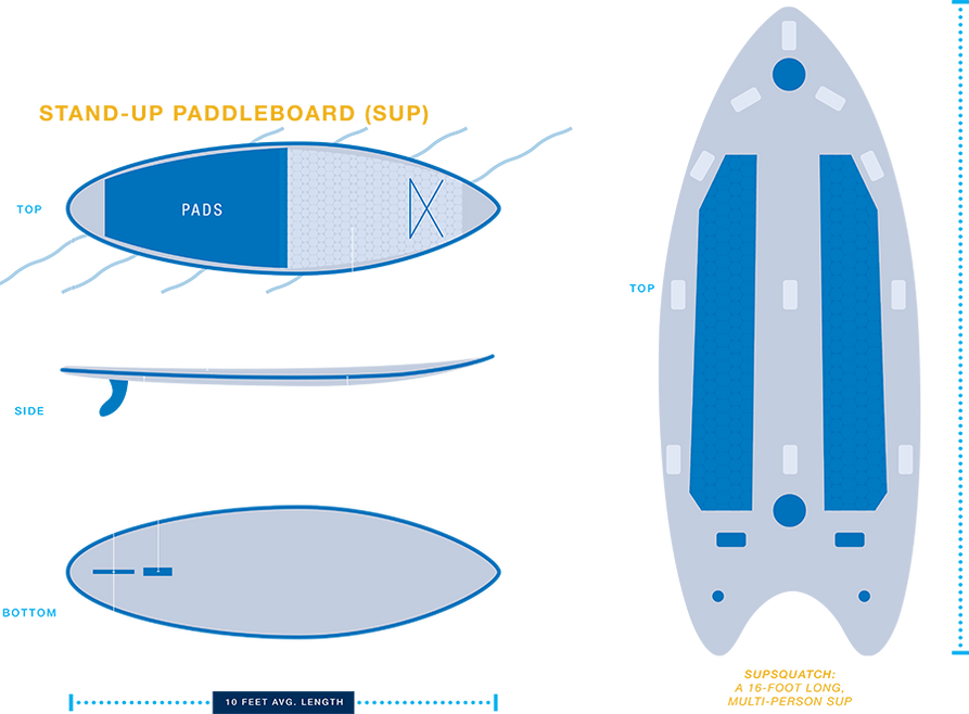 A diagram of a stand-up paddleboard