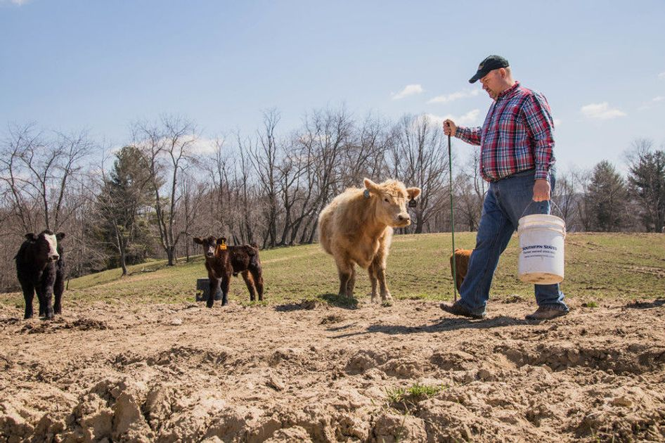 No thumbnail image for WVU Extension Service Program Helps Farmers Continue to be Productive and Prosperous