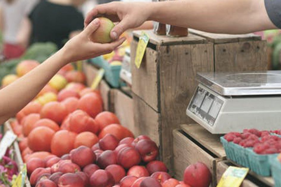 No thumbnail image for WVU, Department of Agriculture working to address food deserts