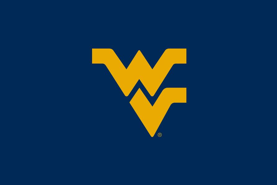 Flying WV logo with a blue background