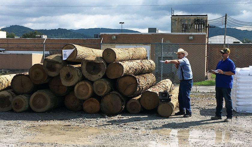 Auctioneer Dallas Heldreth (second from left) and Mountain Loggers Cooperative Association member Mark Shreve auction a load of logs at the Log-a-Load for Kids Log Auction on Oct. 4.