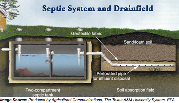Septic System and Drainfield