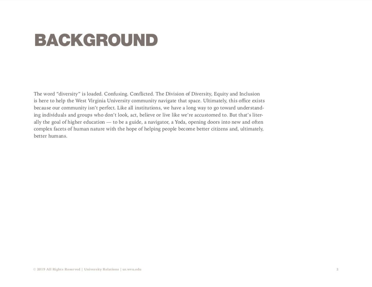 Screenshot of Diversity creative campaign explaining the background of the problem.