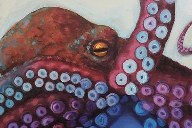 Colorful painting of a squid by Hillary