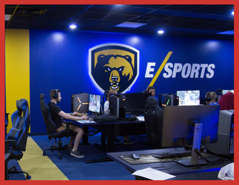 The dedicated esports room is awesome, with mood lighting, a giant bear graphic on the wall, gaming chairs, and state-of-the-art gaming Pcs.