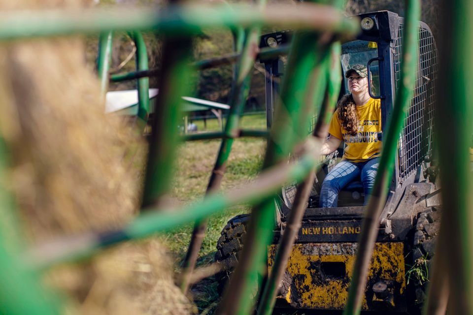 A student using a tractor to load hay at WVU Potomac State College.