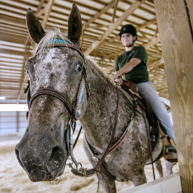 An equine student rides a horse in the Riding Arena at WVU Potomac State College.